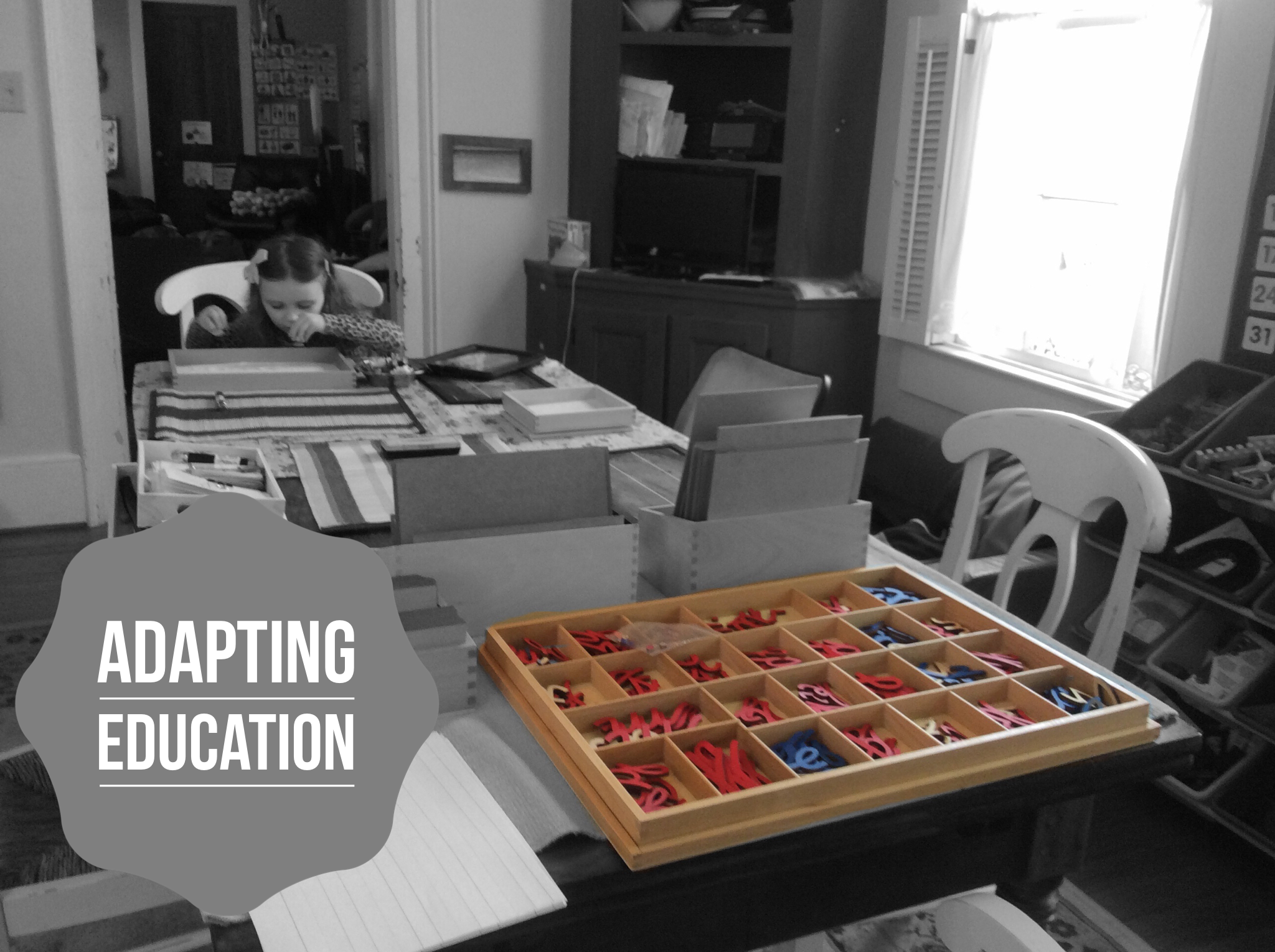 Adapting Education